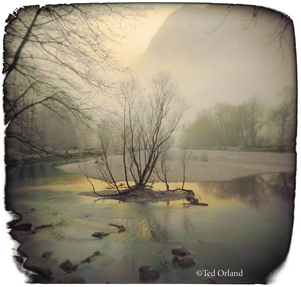 Orland, Tree - Merced River, hand colored photograph